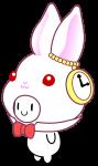 素体A ウサギ